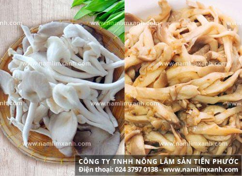 Cách dùng nấm ngọc thành đúng cách và một số lưu ý khi sử dụng nấm