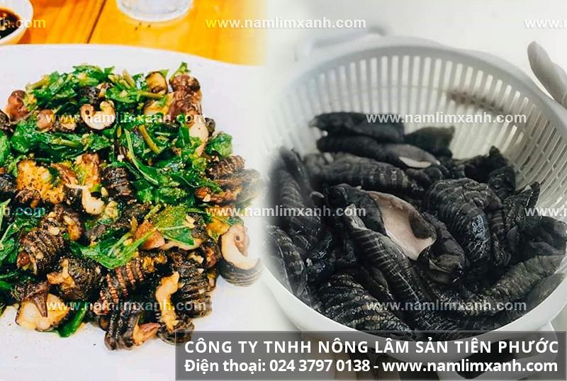 Cách dùng nấm biển chế biến món ăn và sử dụng súp nấm biển thơm ngon