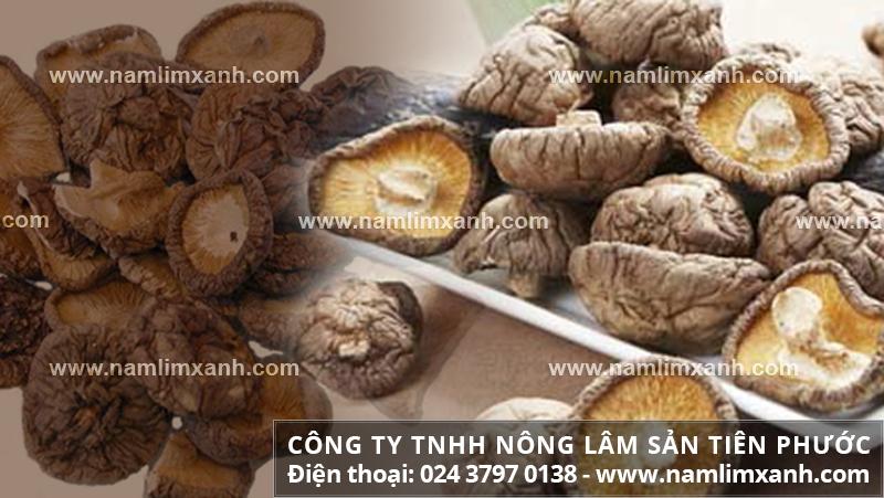 Giá nấm hương hiện tại như thế nào và giá mua bán nấm hương tươi khô