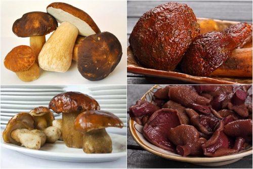 Các loại nấm gan bò đang được nhiều người tin dùng.