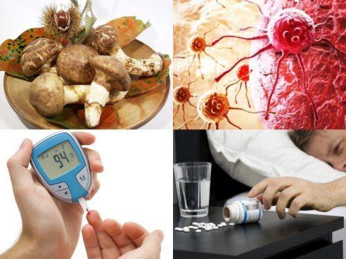 Công dụng của nấm tùng nhung trong ngăn ngừa và hỗ trợ các bệnh ung thư, tim mạch, tiểu đường