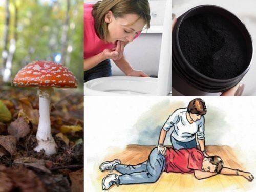 Cách sơ cứu ngộ độc nấm đỏ