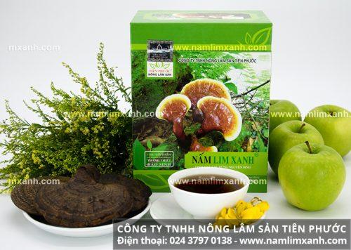 Tác dụng cây nấm lim xanh tự nhiên đã chế biến rất tốt cho bệnh lý