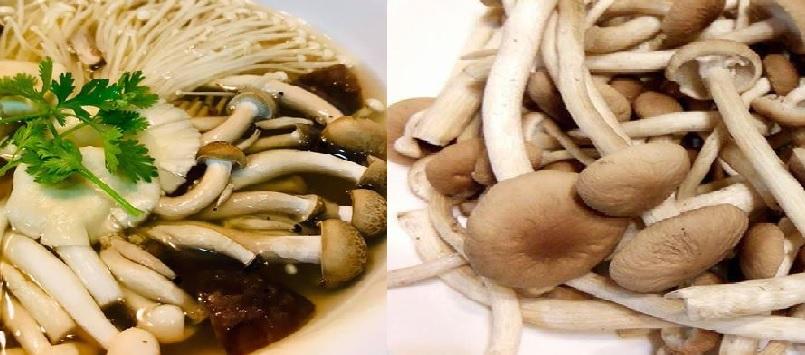 Cách nấu canh nấm trân châu như thế nào và các món ăn từ nấm trân châu