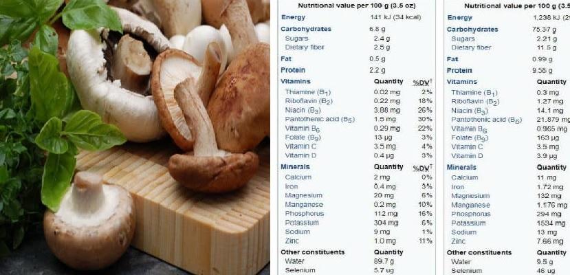 Giá trị thành phần dinh dưỡng của nấm đông cô có tác dụng gì?