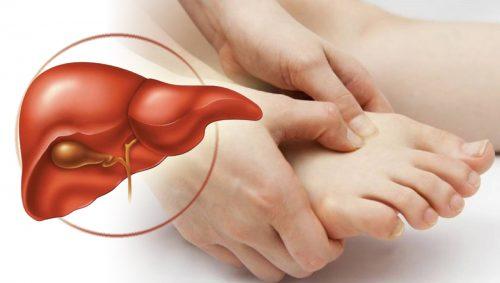 Bấm huyệt giải độc gan giúp mang lại hiệu quả phục hồi chức năng gan