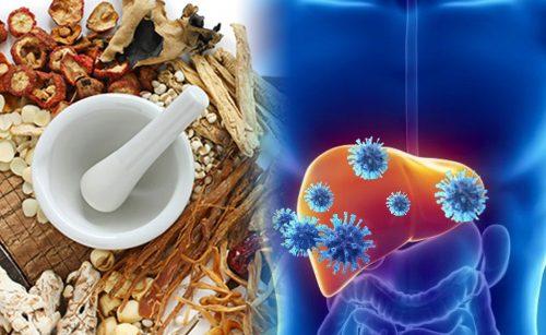 Lưu ý khi điều trị viêm gan bằng Đông y và món ăn điều trị viêm gan B
