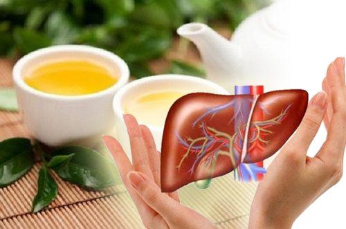 Trà giải độc gan có tác dụng gì trà giải độc gan giá bao nhiêu tiền?