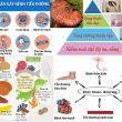 Bệnh tiểu đường với nguyên nhân triệu chứng và cách chữa bệnh tiểu đường