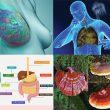 Bệnh ung thư với nguyên nhân và triệu chứng bệnh ung thư. Viện Y