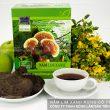 Cách dùng nấm lim xanh rừng Tiên Phước tự nhiên giúp điều trị bệnh