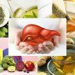 Cách giải độc gan từ thiên nhiên tại nhà và các loại trà giải độc gan