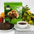 Cách nấu nấm lim xanh rừng tự nhiên Tiên Phước, uống nấm lim thật?