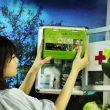Cách nấu nấm lim xanh Quảng Nam – Lời khuyên khi sử dụng chữa bệnh