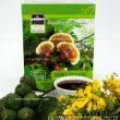 Công dụng của nấm liêm xanh rừng trong giải độc, thanh lọc cơ thể