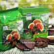 Công dụng của nấm linh xanh rừng tự nhiên chống lão hóa da hiệu quả