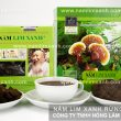 Giá nấm lim xanh của công ty Tiên Phước – Phân biệt nấm lim rừng