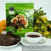Các loại nấm lim xanh rừng Công ty TNHH Nông Lâm Sản Tiên Phước