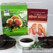 Nấm lim xanh rừng tác dụng gì? Đẩy lùi bệnh gout bằng nấm lim tự nhiên