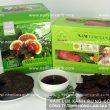 Nấm lim xanh rừng tự nhiên Tiên Phước có công dụng điều trị bệnh gì?