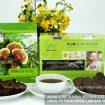 Nấm lim xanh rừng tự nhiên Tiên Phước điều trị bệnh gout hiệu quả