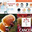 Nguyên nhân ung thư với dấu hiệu và cách điều trị ung thư hiệu quả