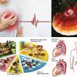 Phòng chống bệnh tim mạch hiệu quả. Viện dinh dưỡng