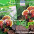Sự thật về nấm lim xanh rừng tự nhiên, nấm lim xanh mọc ở đâu?