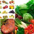Thực phẩm phòng tránh ung thư với công dụng và cách dùng hiệu quả